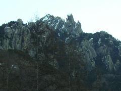 ooyasuri2007